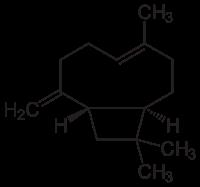 200px-Beta-Caryophyllen