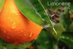 Terpene-Profile-Limonene-The-Leaf-Online2
