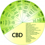 CBD and Cannabinoid Benefits Wheel