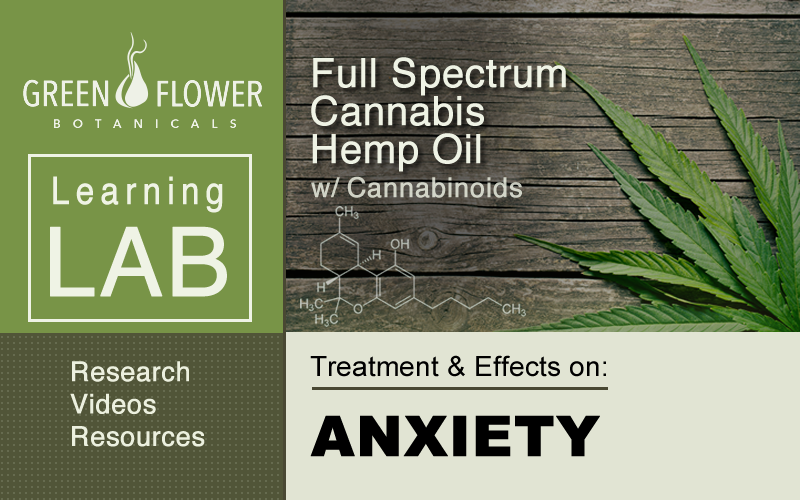 Cannabis Hemp Oil with Cannabinoids and the treatment of anxiety