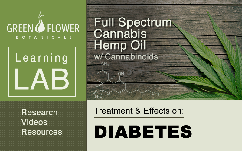Using Cannabis Hemp Oil with CBD Cannabinoids to treat Diabetes