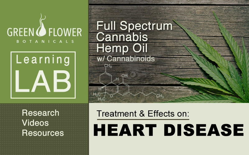 Full-Spectrum-Cannabis-Hemp-Oil-CBD-Heart-Disease
