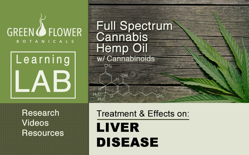Full-Spectrum-Cannabis-Hemp-Oil-CBD-Liver-Disease