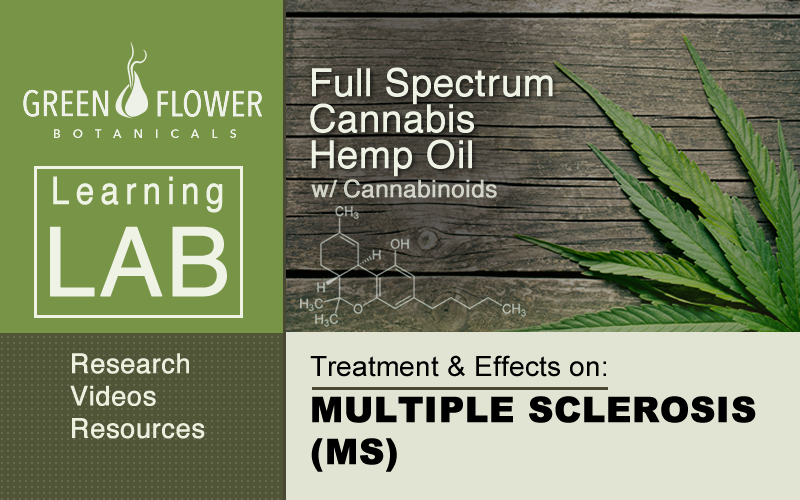 Hemp Oil with Cannabinoids: Treatment Effects on Multiple Sclerosis -MS