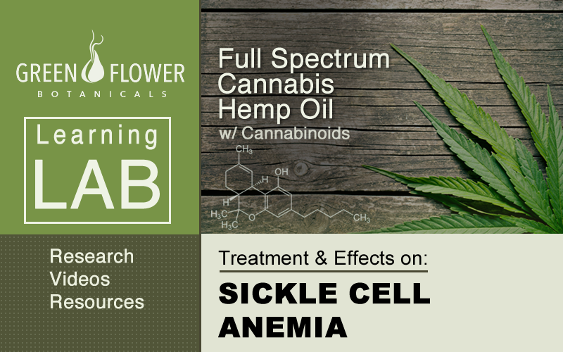 Full-Spectrum-Cannabis-Hemp-Oil-CBD-SICKLE CELL ANEMIA