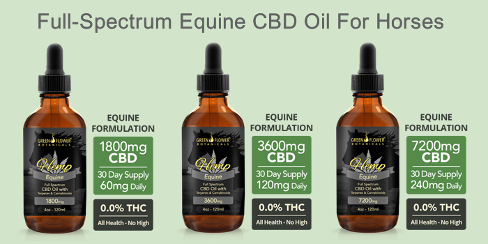 Full Spectrum Equine CBD Oil For Horses