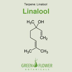 Linalool - Terpene