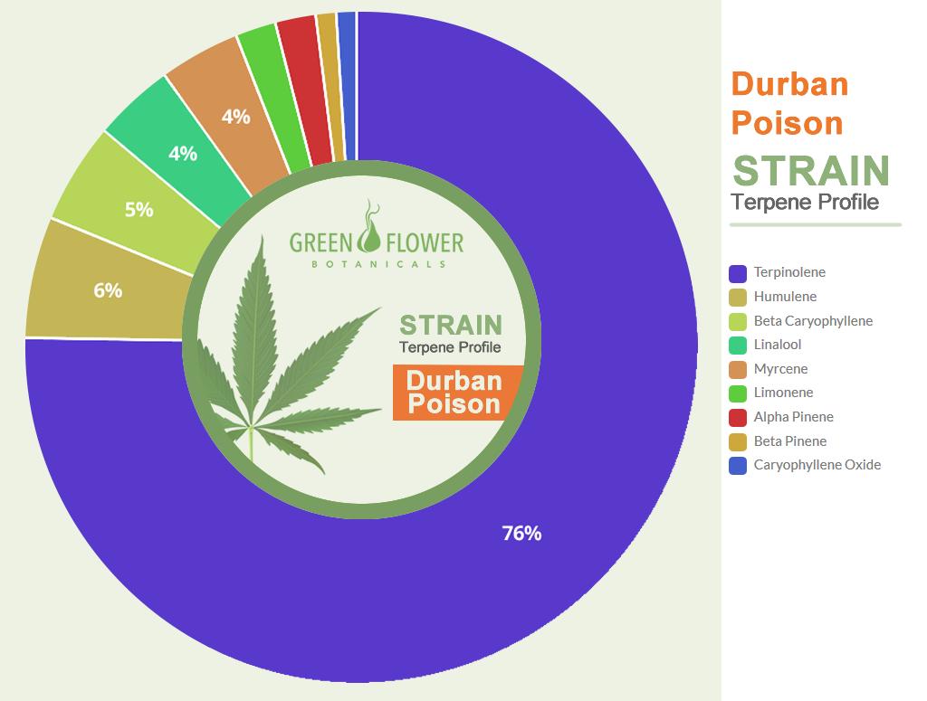 Strain Profile Durban Poison CBD Oil