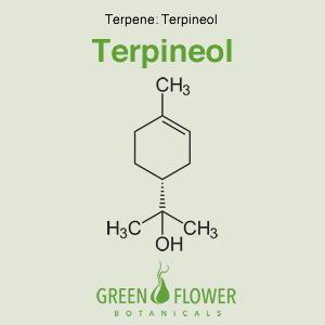 Terpineol - Terpene