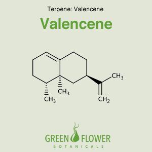 Valencene - Terpene