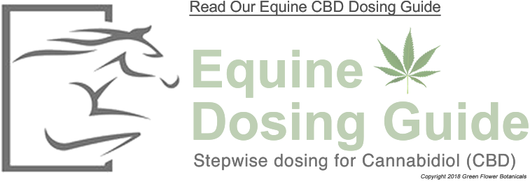 Dosing CBD for Horses - Equine CBD Dosing Guide
