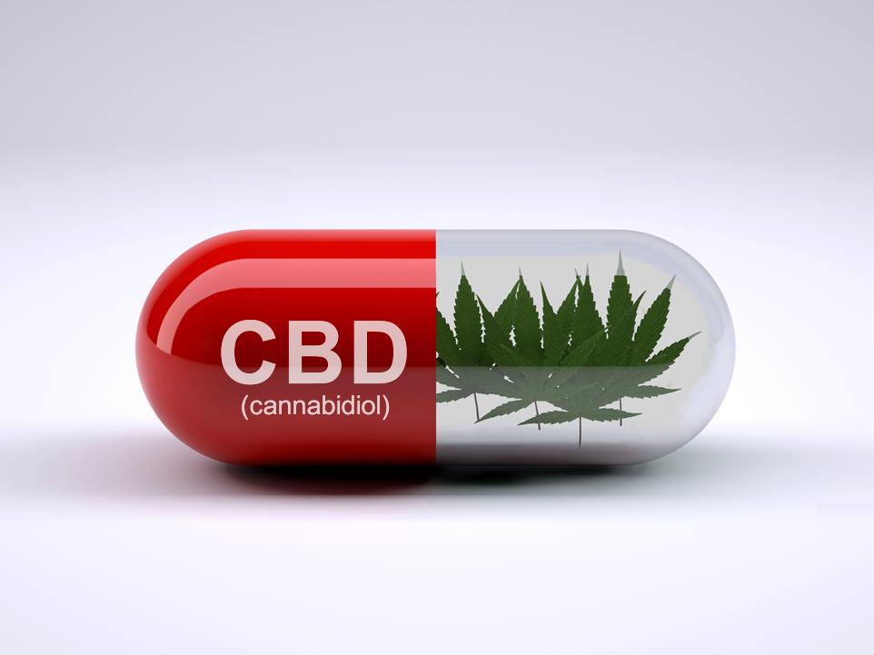 CBD - Cannabidiol Capsule