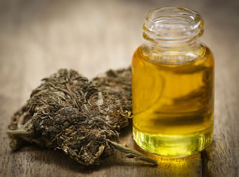 hemp derived cbd oil